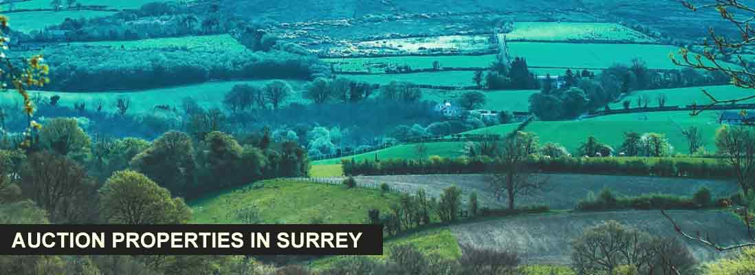 Auction properties in Surrey, England
